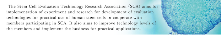 The Stem Cell Evaluation Technology Research Association (SCA) aims for implementation of experiment and research for development of evaluation technologies for practical use of human stem cells in cooperate with members participating in SCA. It also aims to improve technology levels of the members and implement the business for practical applications.