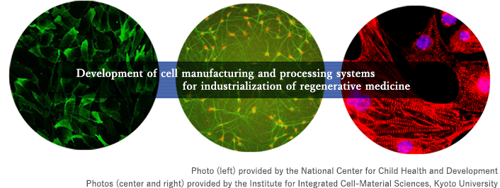 Development of cell manufacturing and processing systems for industrialization of regenerative medicine